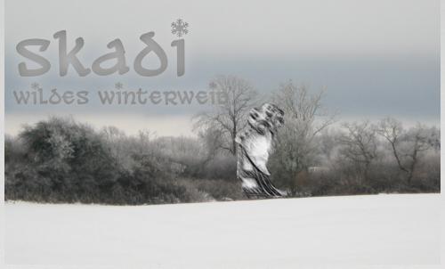 Foto von graublauer Frostlandschaft, eine unscharfe Frauenfigur vor rauhreifüberzogenem Gehölz, daneben der Text: Skadi, wildes Winterweib