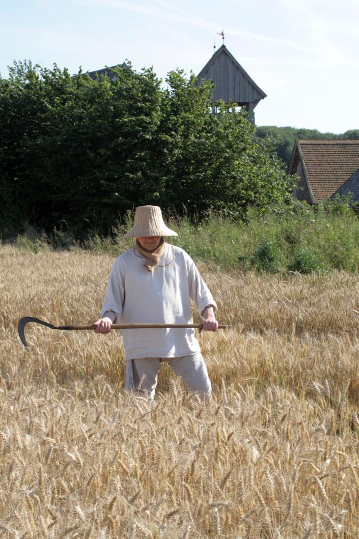 mittelalterlicher Erntearbeiter