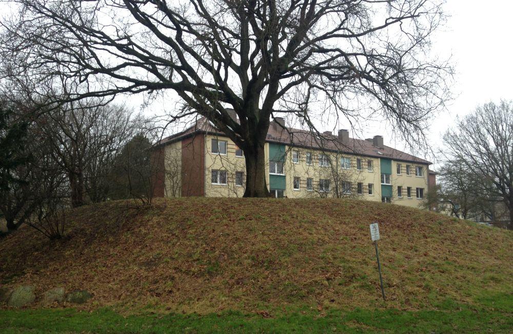 Ein ca. 4 m hoder, grasbewachsener Hügel mit einem großen Baum oben drauf. Im nahen Hintergrund ist ein Mehrfamilienhaus zu sehen.