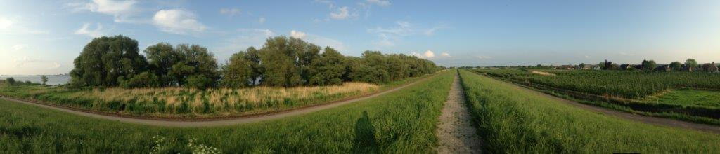 Panorama-Aufnahme vom Deich aus: die Elbe, Bäume, Stäucher und Schilf vor dem Deich, direkt hinter dem Deich weit hinten der Wikingermarkt, davor Obstbaum-Anlagen mit alten Bauernhäusern dahinter.